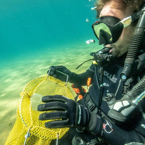 diver cleaning up trash in lake tahoe